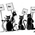 Quattro gatti AP